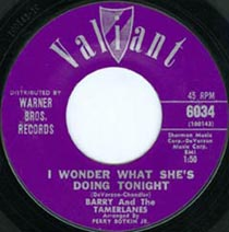 "45 of Barry & The Tamerlanes ""I Wonder What She's Doing Tonight"""