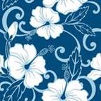 Blue Hawaii Print for Elvis birthday